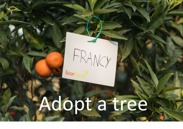 Adopt a tree: our project with Biofarm